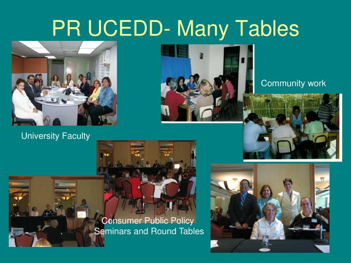 PR UCEDD- Many Tables