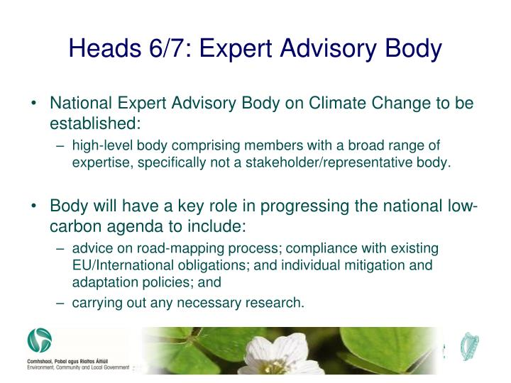 Heads 6/7: Expert Advisory Body