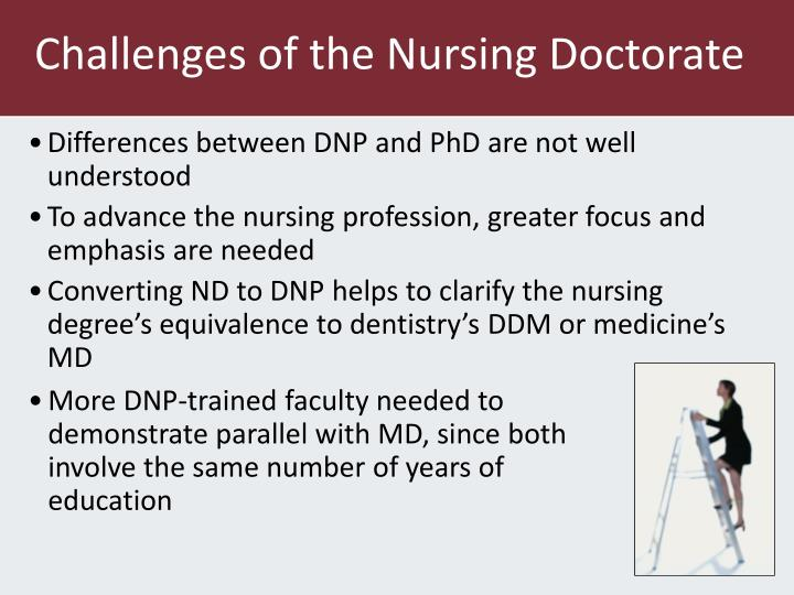 Challenges of the Nursing Doctorate