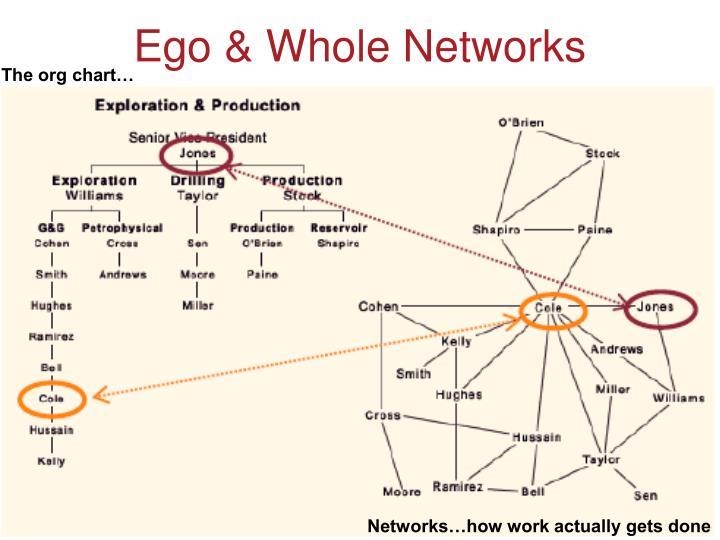 Ego & Whole Networks