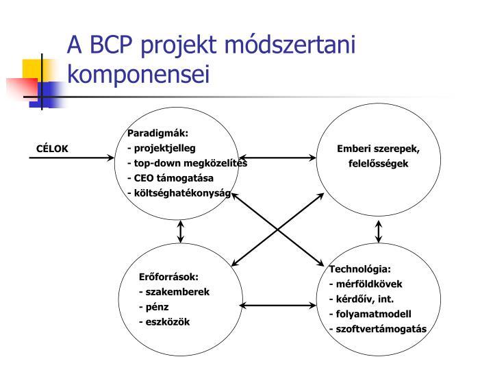 A BCP projekt módszertani komponensei