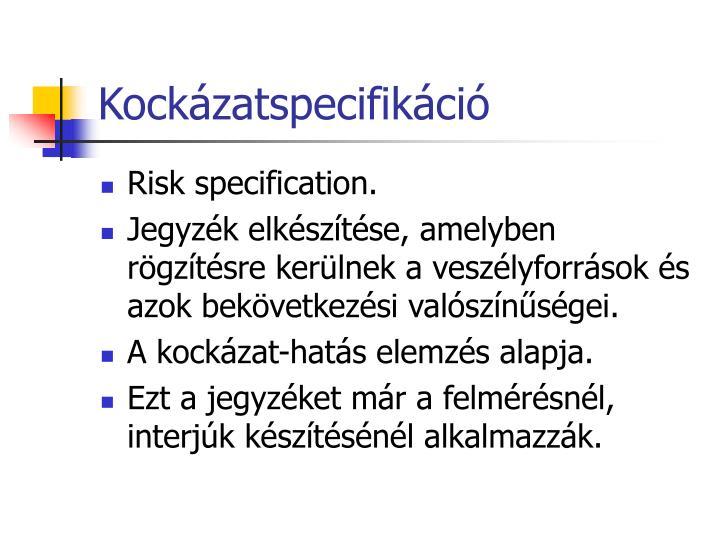 Kockázatspecifikáció