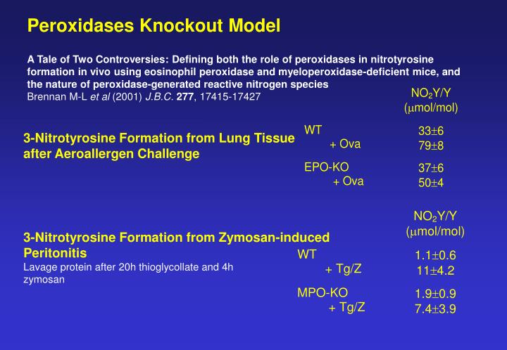 Peroxidases Knockout Model