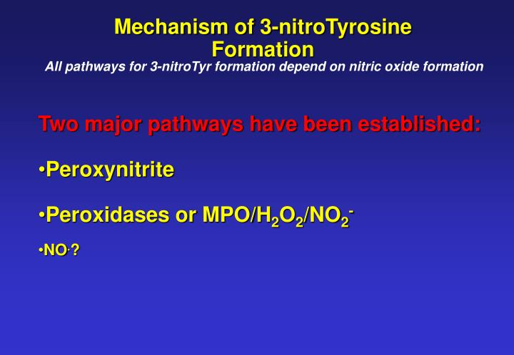 Mechanism of 3-nitroTyrosine Formation