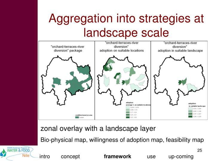 Aggregation into strategies at landscape scale