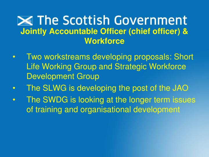 Jointly Accountable Officer (chief officer) & Workforce