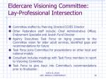 eldercare visioning committee lay professional intersection