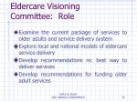 eldercare visioning committee role