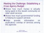 meeting the challenge establishing a cross agency budget