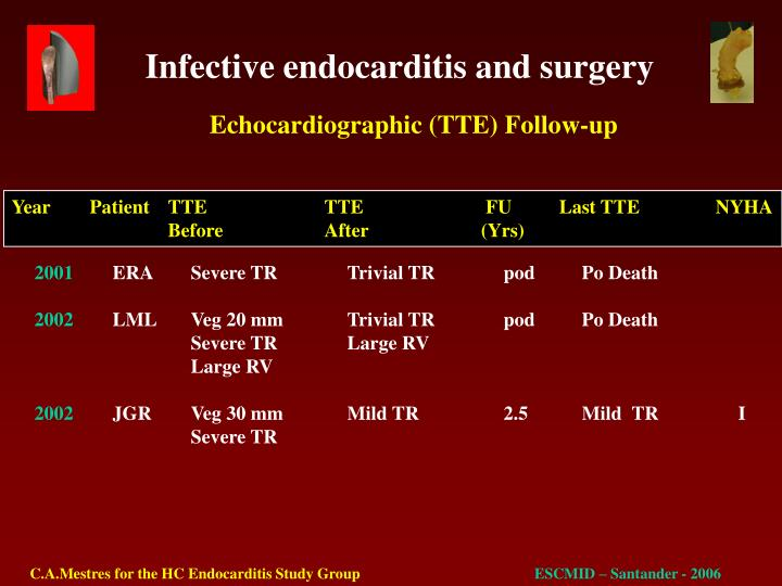Echocardiographic (TTE) Follow-up