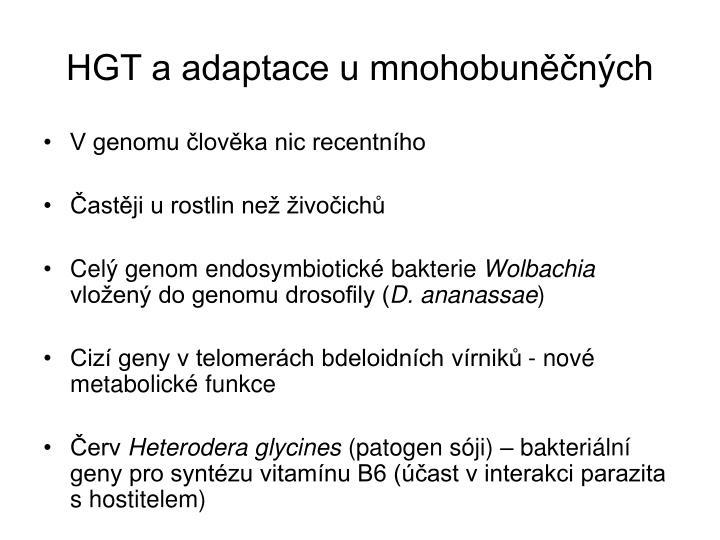 HGT a adaptace u mnohobuněčných