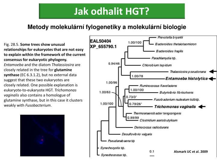 Jak odhalit HGT?