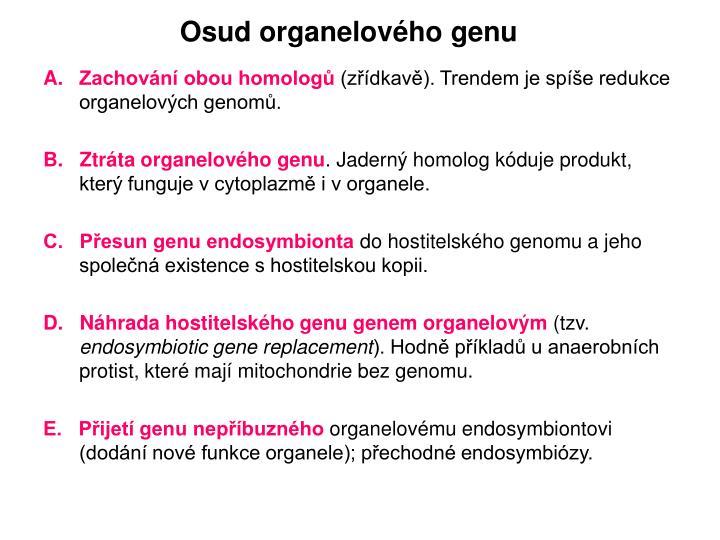 Osud organelového genu