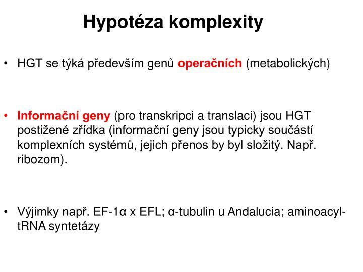 Hypotéza komplexity