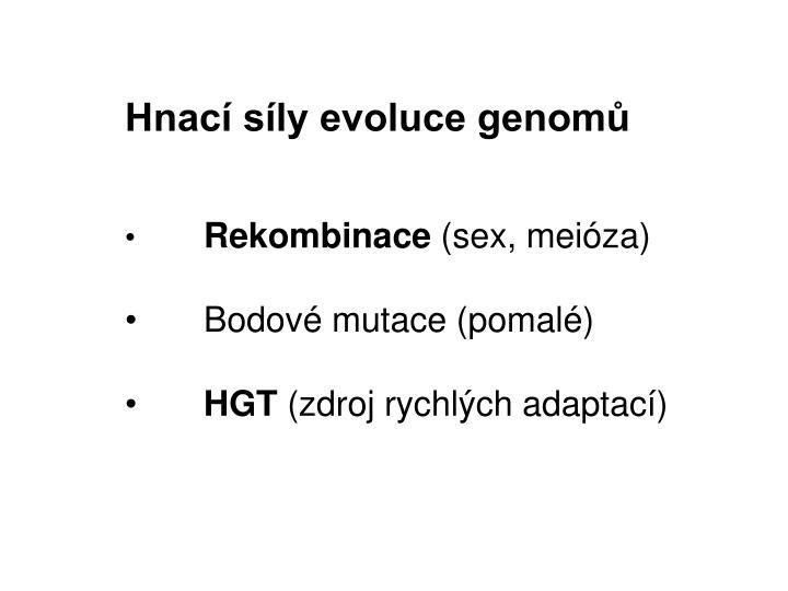Hnací síly evoluce genomů
