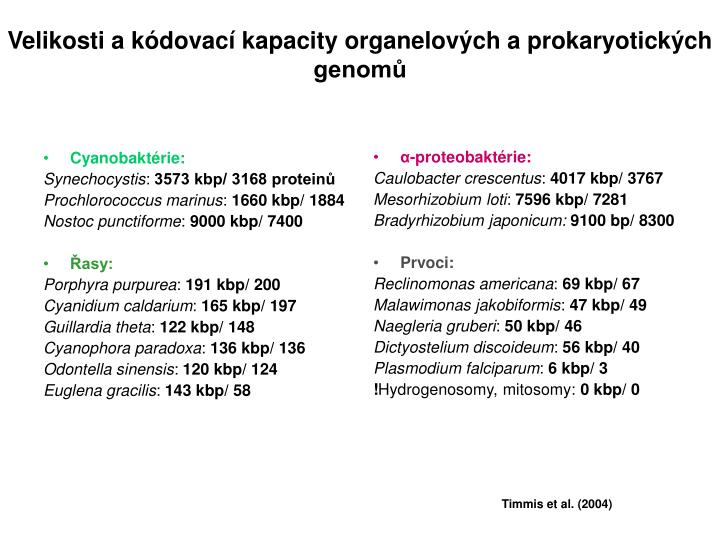 Cyanobaktérie: