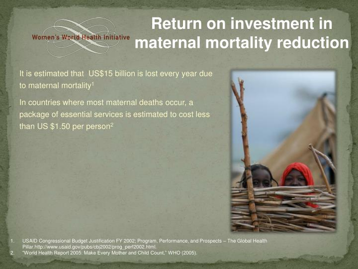 Return on investment in maternal mortality reduction