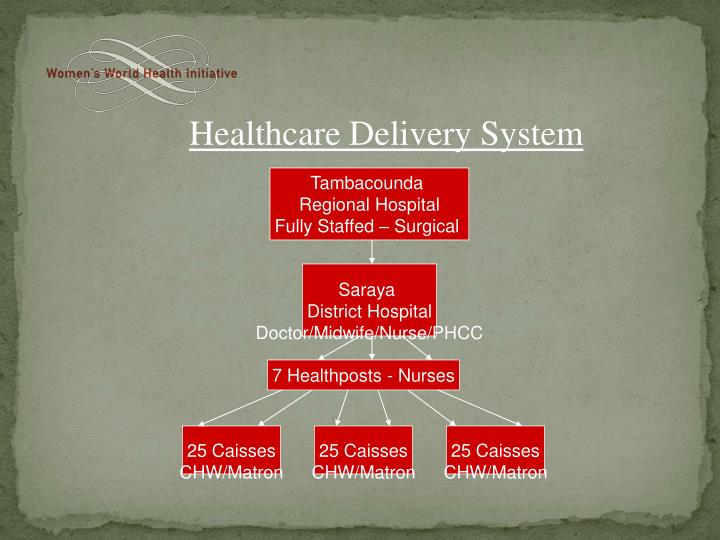 Healthcare Delivery System