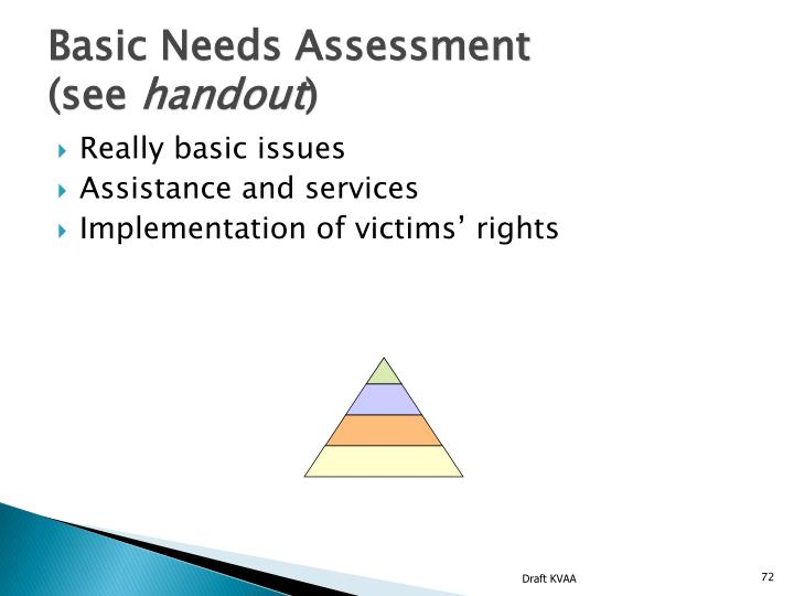 Basic Needs Assessment