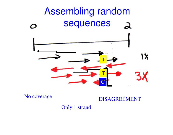 Assembling random sequences