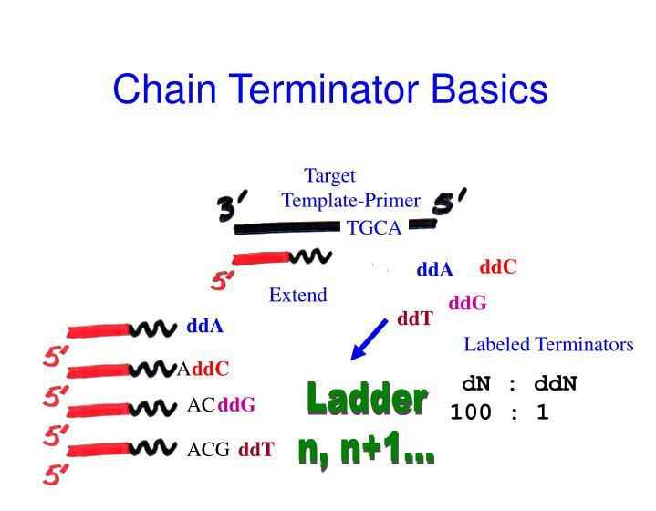 Chain Terminator Basics