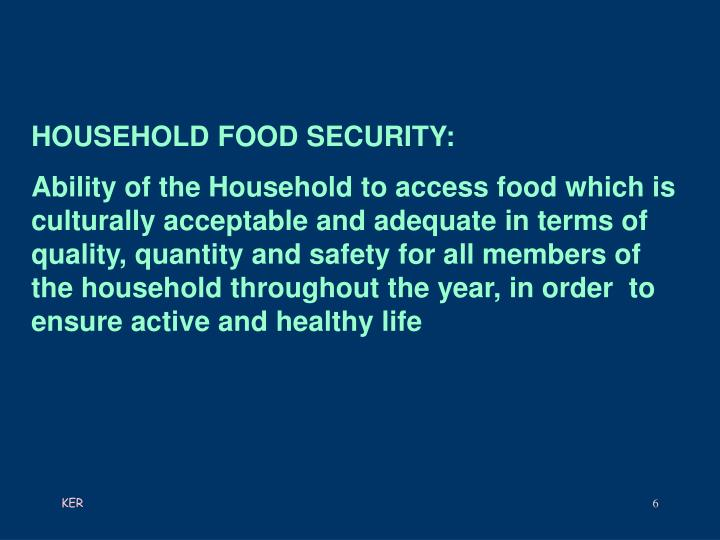 HOUSEHOLD FOOD SECURITY: