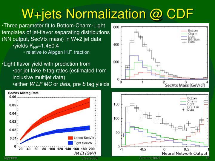 W+jets Normalization @ CDF