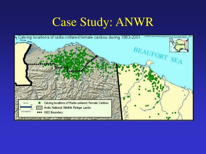 Case Study: ANWR