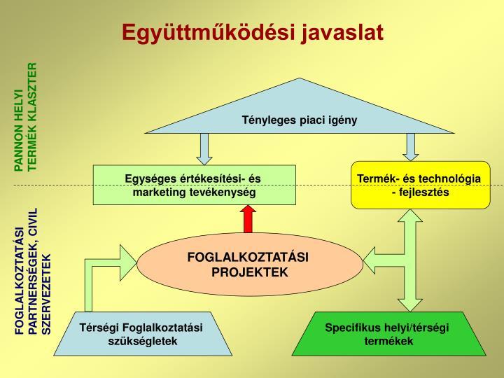 Együttműködési javaslat