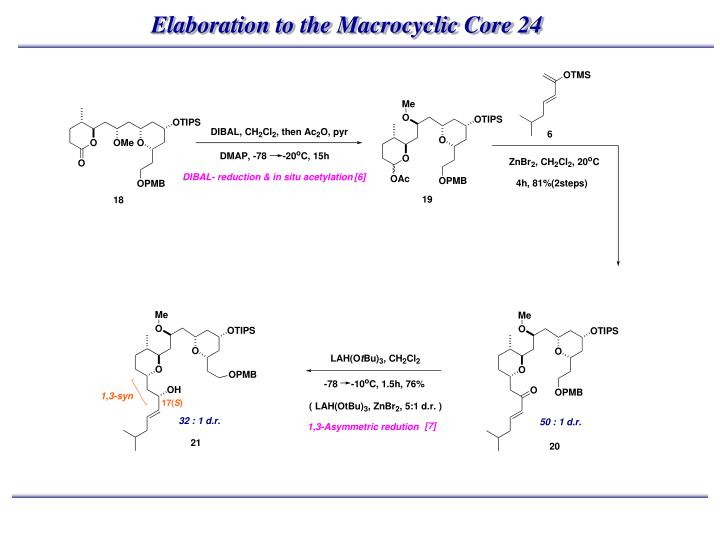 Elaboration to the Macrocyclic Core 24
