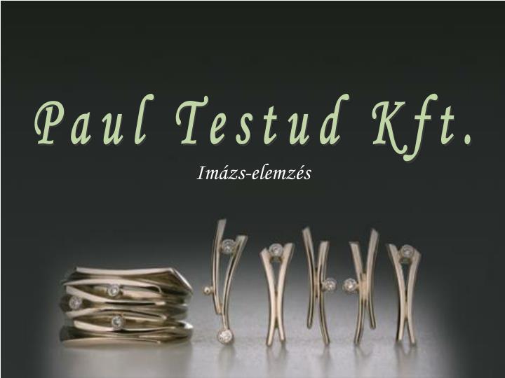 Paul Testud Kft.