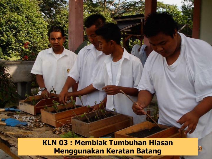 KLN 03 : Membiak Tumbuhan Hiasan Menggunakan Keratan Batang