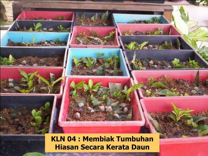 KLN 04 : Membiak Tumbuhan Hiasan Secara Kerata Daun