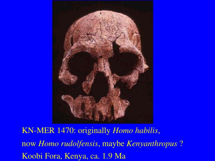 KN-MER 1470: originally