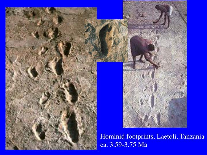 Hominid footprints, Laetoli, Tanzania