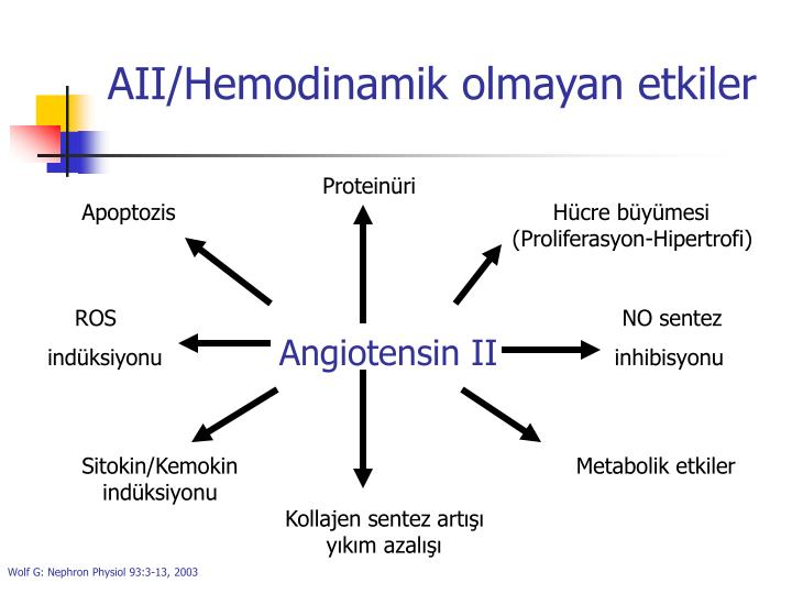 AII/Hemodinamik olmayan etkiler