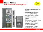 stores all data asm cluster file system acfs