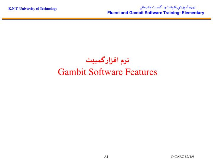 Gambit software features