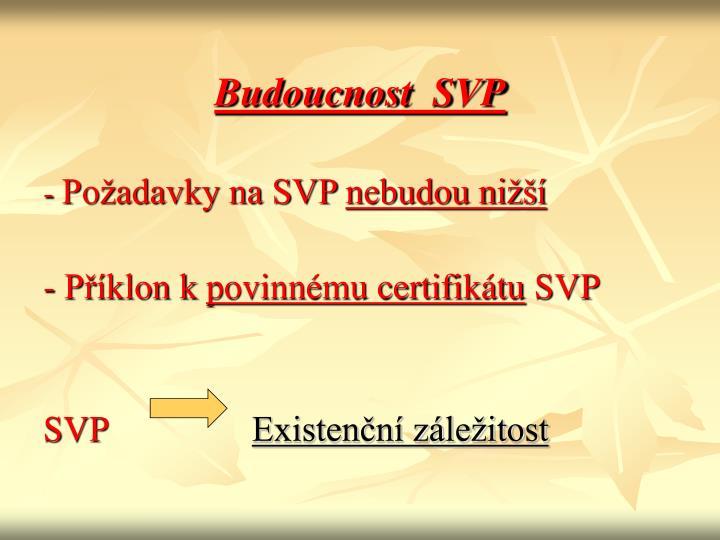 Budoucnost  SVP