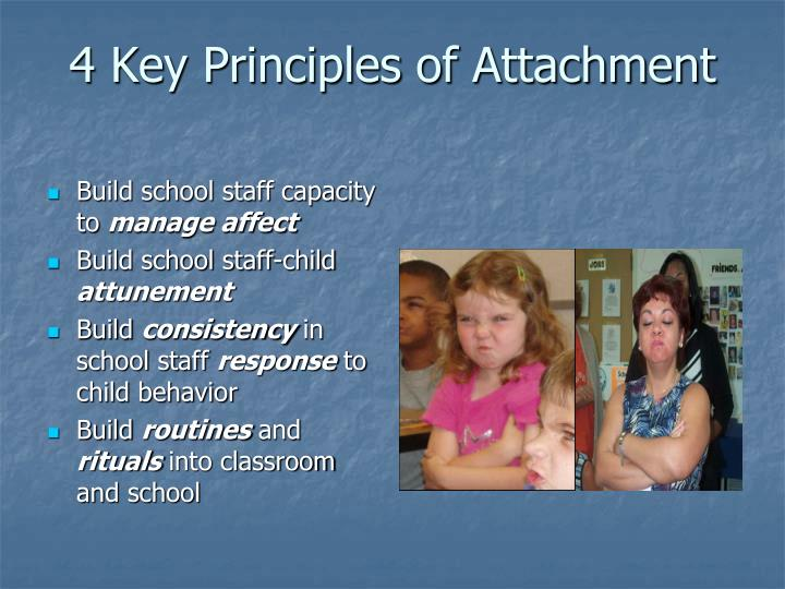 4 Key Principles of Attachment