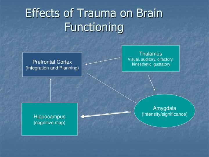 Effects of Trauma on Brain Functioning