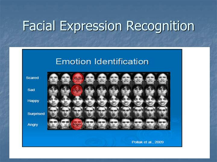 Facial Expression Recognition