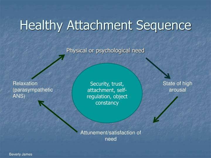 Healthy Attachment Sequence