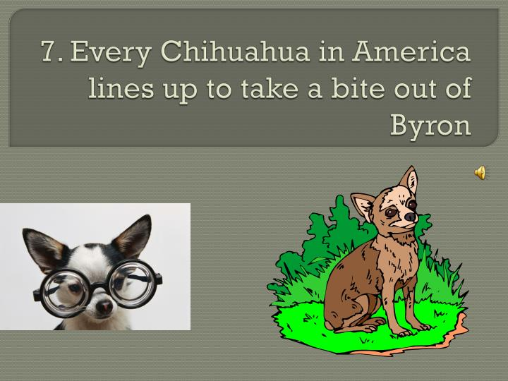 7. Every Chihuahua in America lines up to take a bite out of Byron