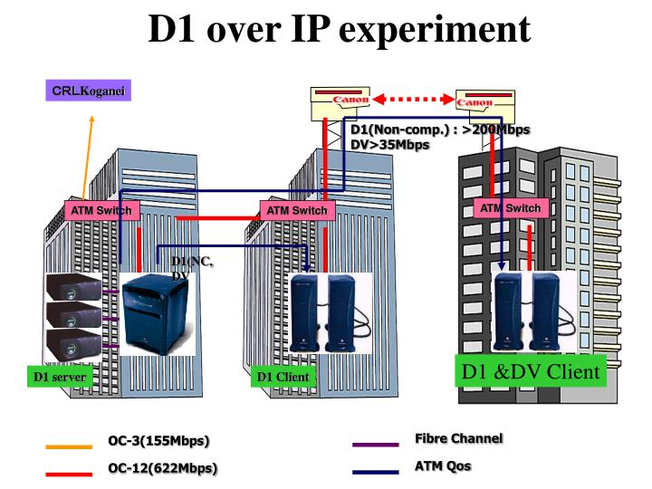 D1 over IP experiment