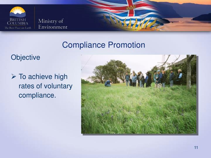 Compliance Promotion