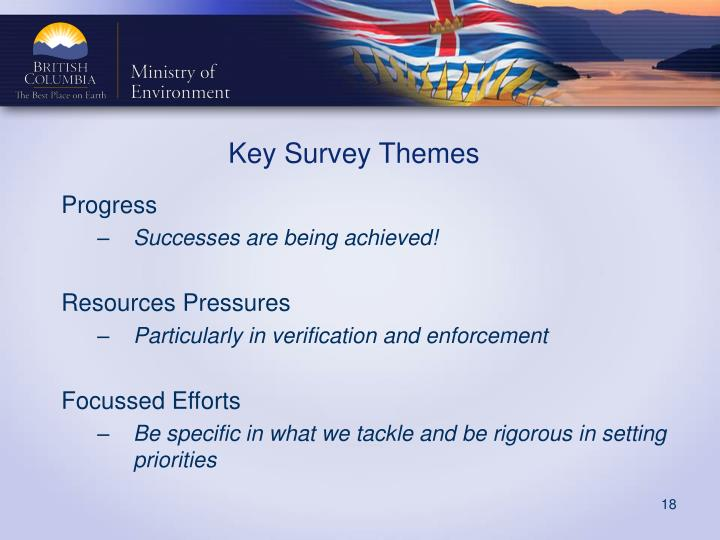 Key Survey Themes