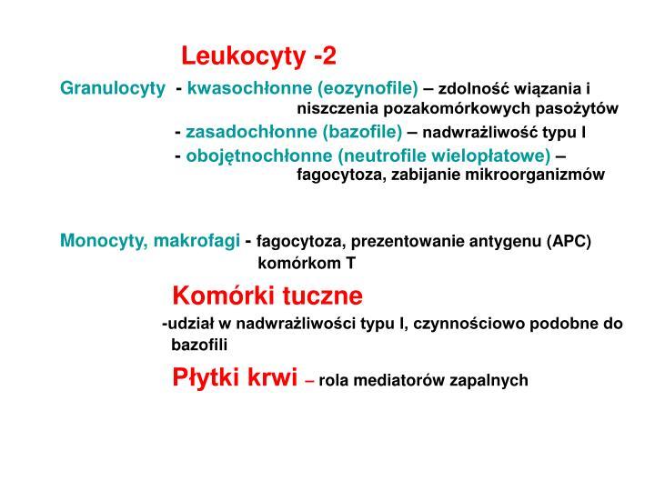 Leukocyty -2