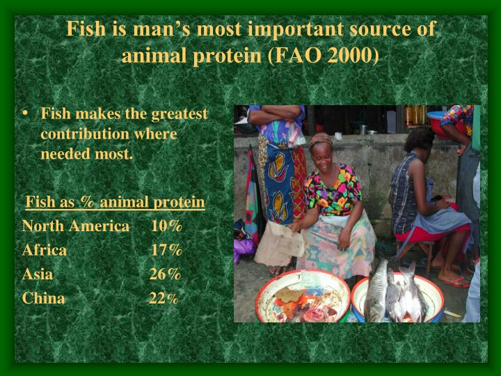 Fish is man's most important source of animal protein (FAO 2000)