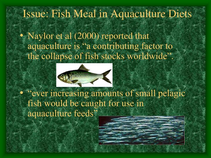 Issue: Fish Meal in Aquaculture Diets
